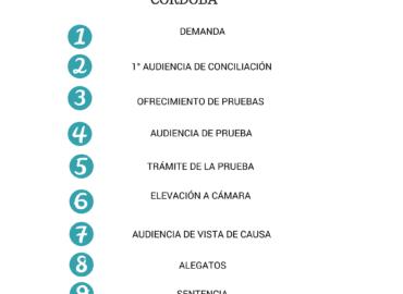 Etapas del Juicio Laboral en Córdoba